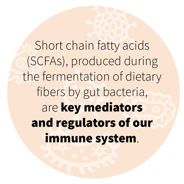 Short chain fatty acids (SCFAs), produced during the fermentation of dietary fibers by gut bacteria, are key mediators and regulators of our immune system.