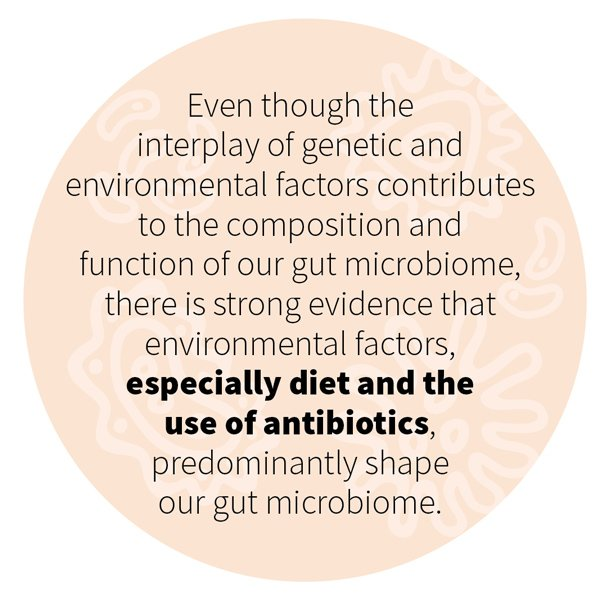 Even though the interplay of genetic and environmental factors contributes to the composition and function of our gut microbiome, there is strong evidence that environmental factors, especially diet and the use of antibiotics, predominantly shape our gut microbiome.