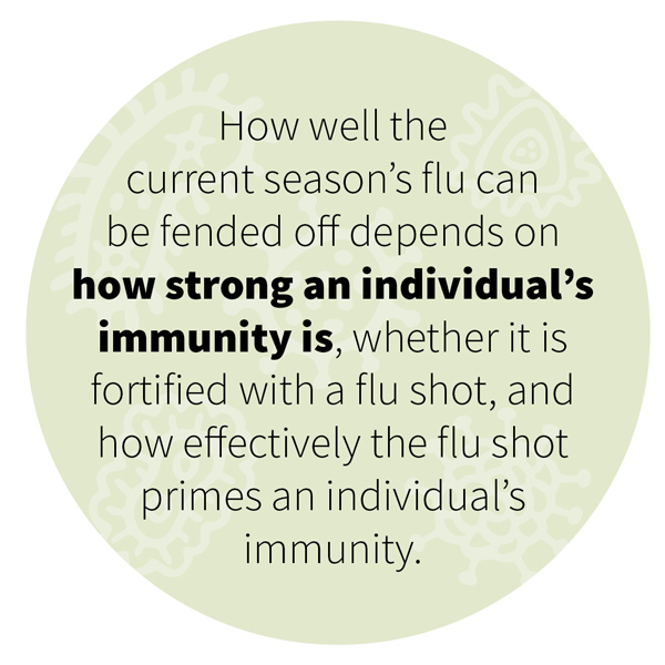 How well the current season's flu can be fended off depends on how strong an individual's immunity is, whether it is fortified with a flu shot, and how effectively the flu shot primes an individual's immunity.