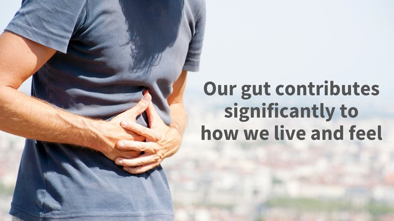 Image: Gut microbes significantly influence our body weight, eating behavior, and even our circadian rhythm.