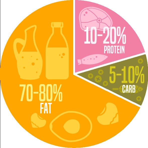 pulsus journal keto diet obese